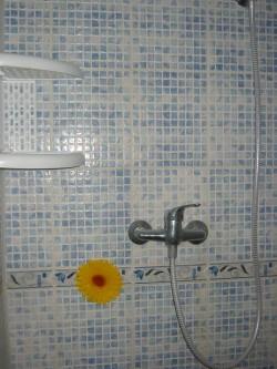 sprcha - chata k pronájmu